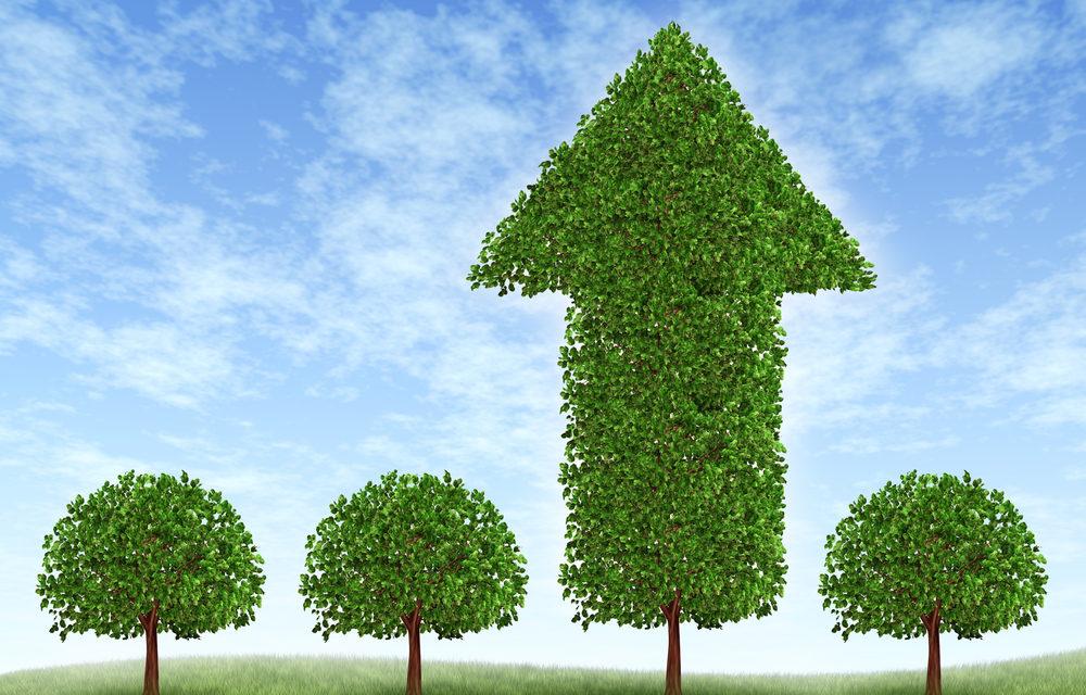 Nueve empresas obtuvieron bonos verdes de la corporación interamericana para el financiamiento de infraestructura