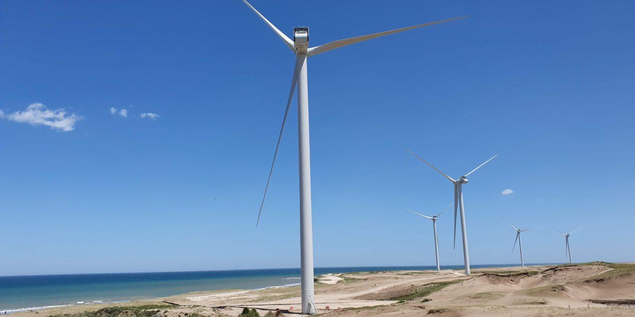 Se inauguró un nuevo parque eólico en Argentina: producirá 158 GWh en este año