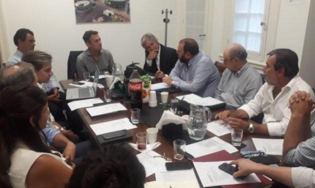 CADER y el director nacional acordaron colaborar sobre nuevas propuestas de desarrollo de las energías renovables