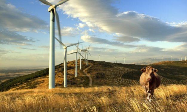 Uruguay da el ejemplo en la región cubriendo en un 98% sus necesidades de generación eléctrica con energías renovables