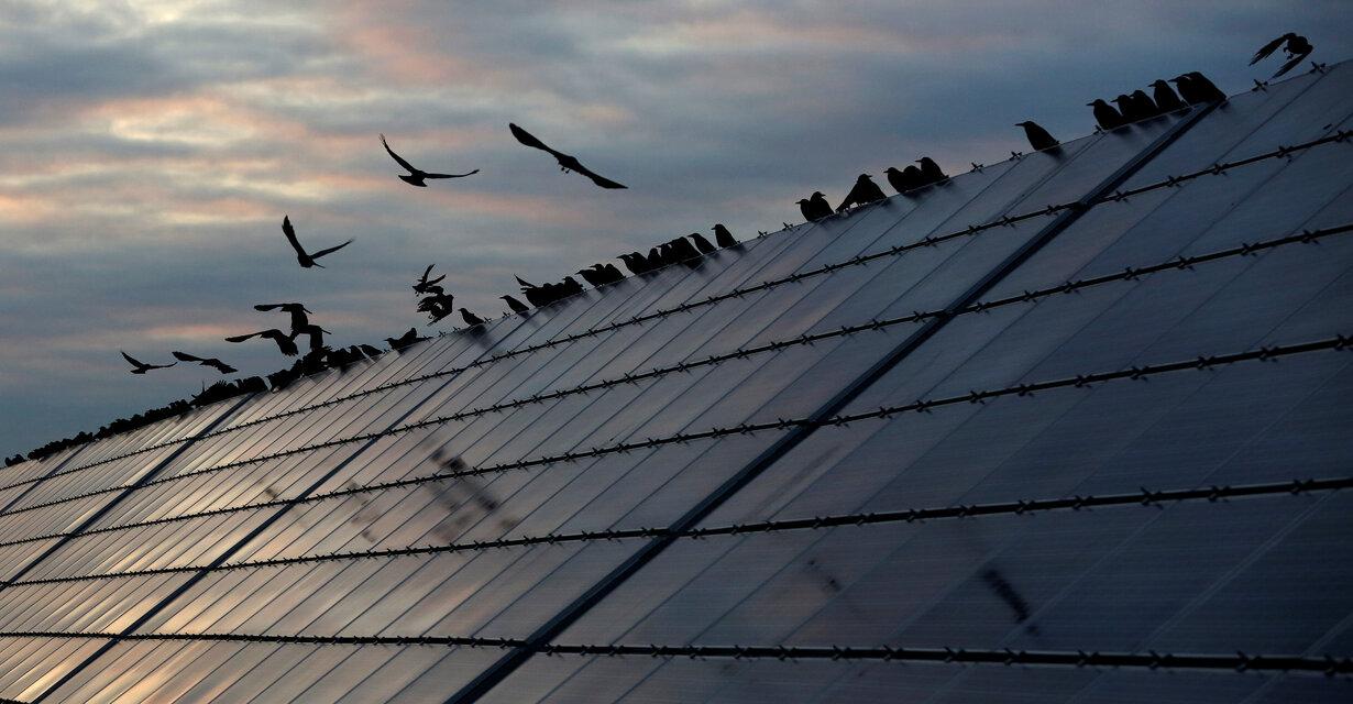 Cerca de 3 GW de nueva potencia renovable se verían privados de entrar en operación comercial en México tras la medida del CENACE