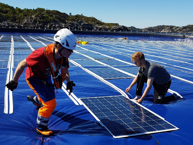 Global Solar Council y Sociedad Internacional analizaron perspectivas de la fotovoltaica flotante