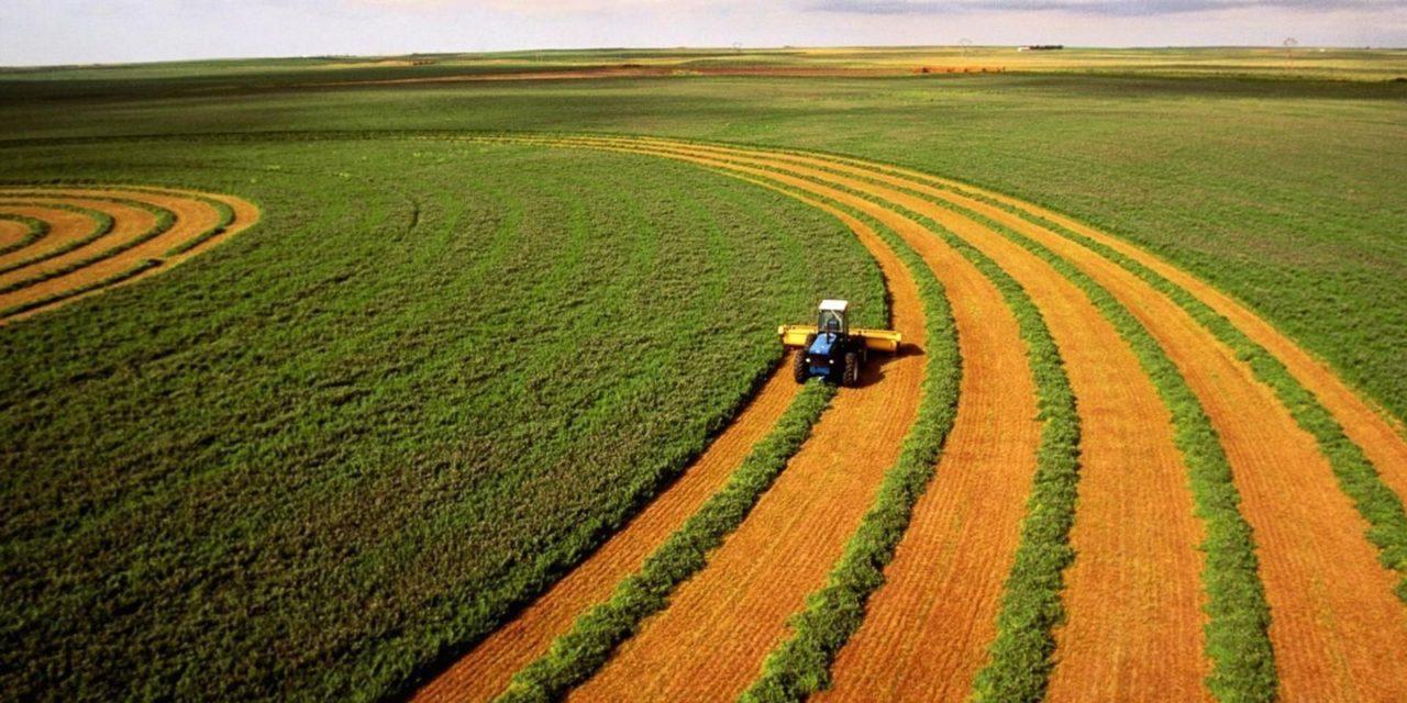 Agricultura lanza financiamiento para inversión de energía renovable en establecimientos productivos