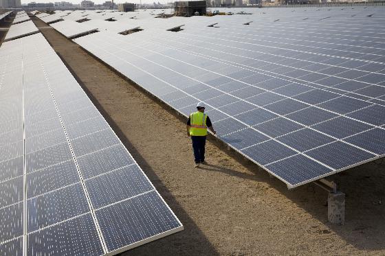 Trina se desprende de los 300 MW que adjudicó en la subasta de renovables de Colombia