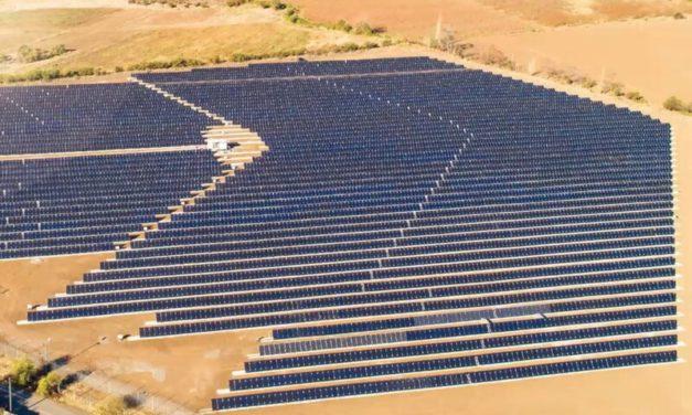 ¿Quiénes son los fabricantes de paneles solares que lideraron ranking global en 2020?