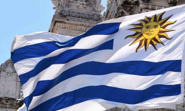 Empresarios aseguran que Uruguay podría demandar energía renovable de Brasil