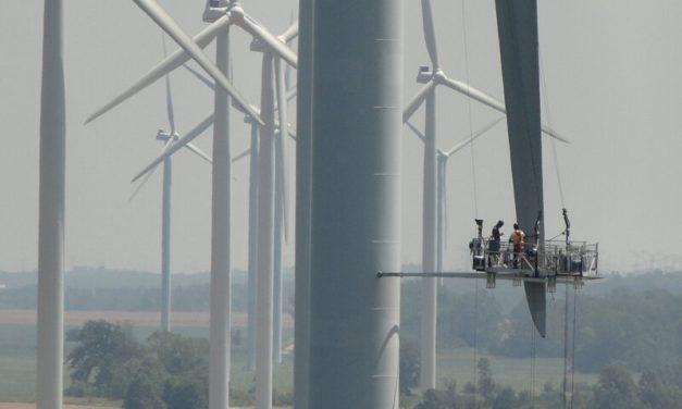Tecnovex proyecta contratos de monitoreo y mantenimiento para 500 MW eólicos