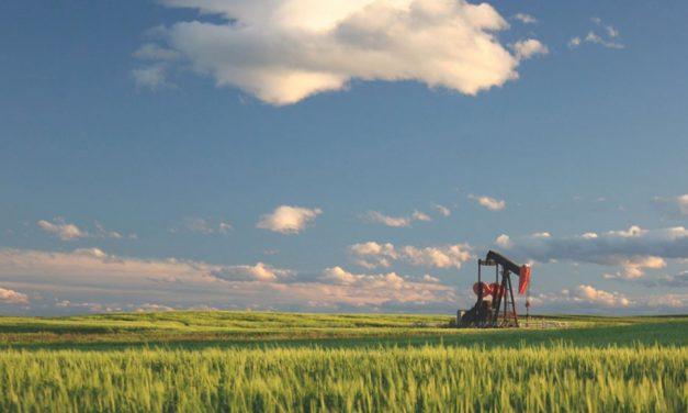 """¿Qué importante petrolera es la primera del mundo en poner fecha hacia la transición """"verde""""?"""