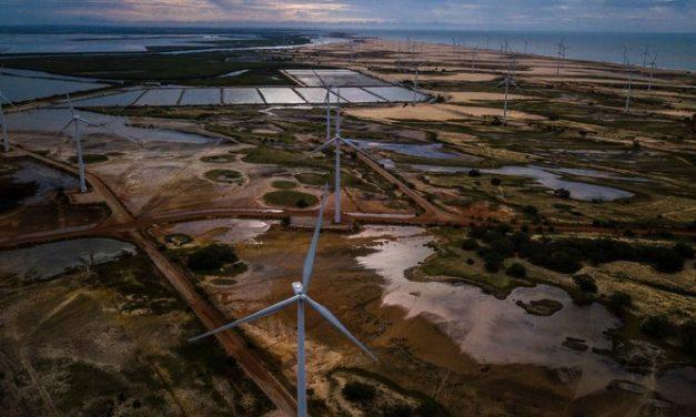 Brasil marca en USD 30 una subasta para energía renovable que será el 4 de diciembre