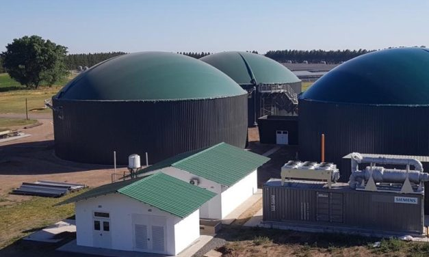 Financiamiento y nuevas licitaciones, medidas esperadas por las bioenergías en Argentina post covid19