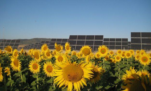 Solarpack avanza con los contratos del nuevo parque solar de 200 MW adjudicado en Ecuador