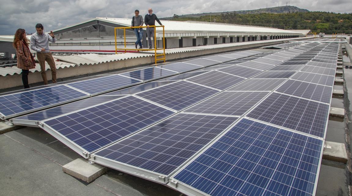Absorber la inversión inicial: Greenyellow encontró la forma de seducir clientes con renovables y eficiencia energética