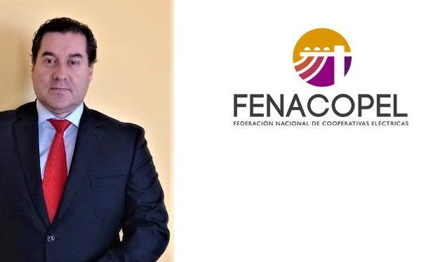 Patricio Molina fue designado gerente de la federación de cooperativas eléctricas de Chile