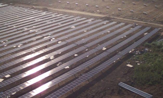 Trina Solar aportará módulos fotovoltaicos «Parque Solar Girasol», uno de los más grandes del Caribe