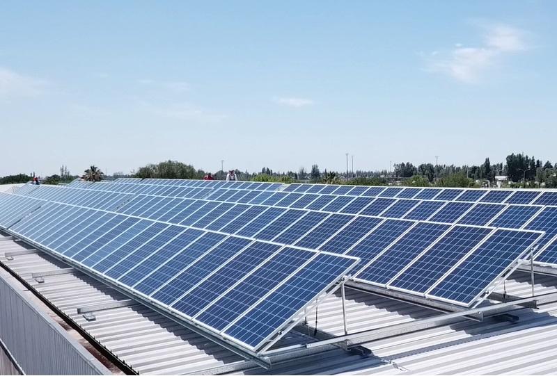 Casos de éxito: empresas logran beneficios significativos tras la incorporación de energías renovables
