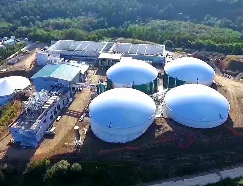 Los planes de la industria bioenergética para 2021 en Argentina