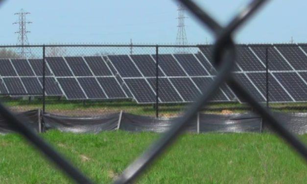 Advierten barreras para lograr concesiones de proyectos renovables en República Dominicana