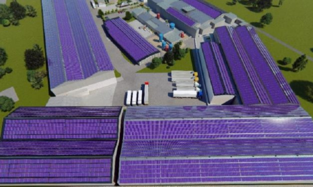 Enertiva avanza con PPAs privados de energía solar en Centroamérica