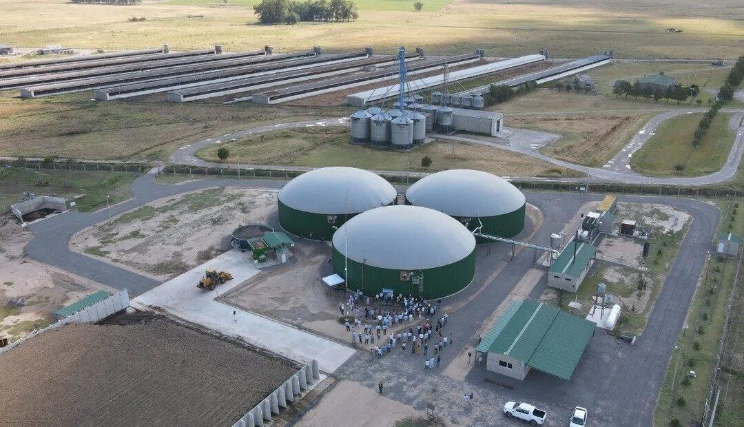 Advierten tarifas desproporcionadas en el transporte eléctrico de las bioenergías en Buenos Aires