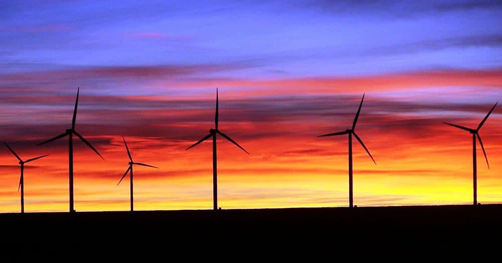 Fue dado de baja el proyecto eólico más grande de la región de Biobío