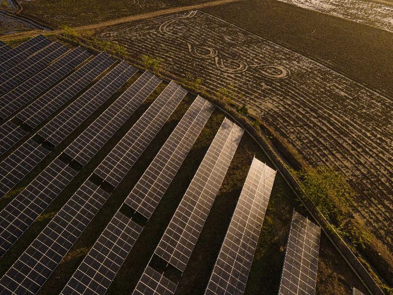 """Roberto Borda: """"Se han licitado 20 MW para instalaciones a nivel industrial en República Dominicana"""""""