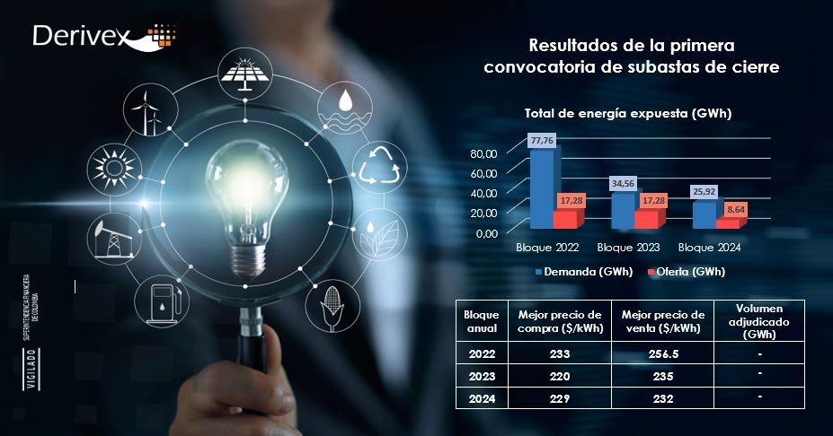 Buenos precios: Derivex tuvo su primera subasta y anunció más convocatorias de renovables