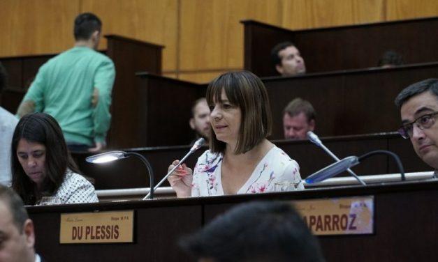Diputados provinciales de Neuquén impulsan la adhesión a la ley de generación distribuida