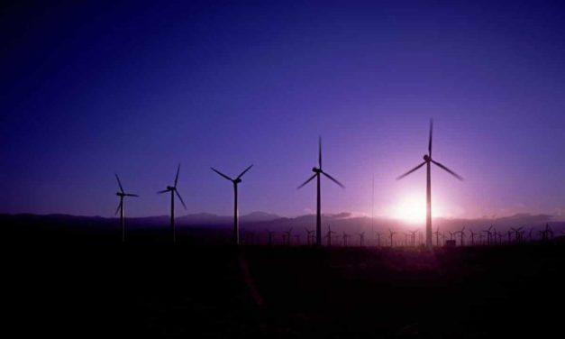 Haizea desarrolla un proyecto piloto de amoníaco verde en Río Negro