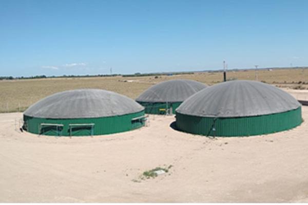 Planta de biogás modelo en Bahía Blanca ya comercializa al sistema y mercado spot