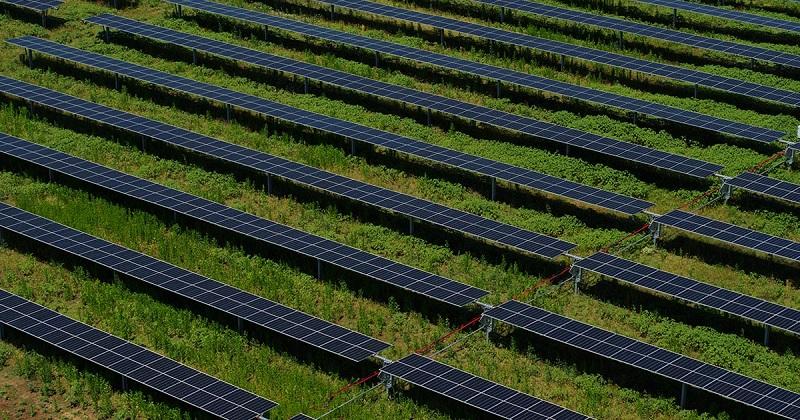 Enel adquirió 3,2 GW de proyectos fotovoltaicos y solares con almacenamiento en EE.UU