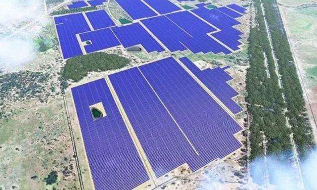 Tendencias: el fabricante Chint abre el juego a módulos de 600 watts para Latinoamérica