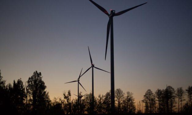 Expectativas por la iniciativa renovable que adjudique USD 10 millones de UNIDO en Uruguay