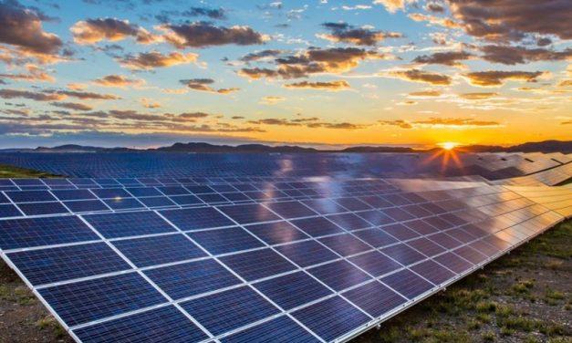 """Una empresa se presentó en la licitación """"Medanito Sur"""" y propuso construir tres parques solares"""