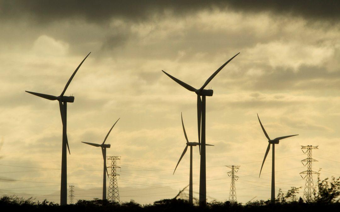 Peligra la continuidad de contratos de energías renovables en México
