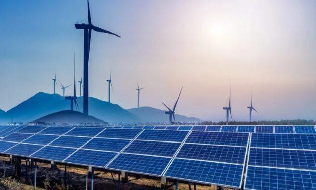 Exclusivo: Las 61 empresas que competirán a fin de mes en la subasta de energías renovables